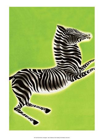 Zebra Prints by Frank Mcintosh