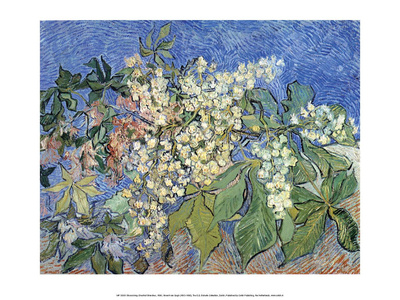Blossoming Chestnut Branches, 1890 Art by Vincent van Gogh
