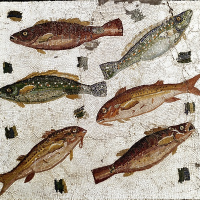 Roman Art : Fishes Photographic Print