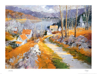 Lake View Prints by Steven Songer
