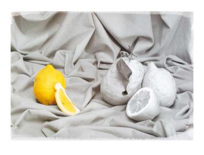 Lemon Prints by Gilles Martin-Raget