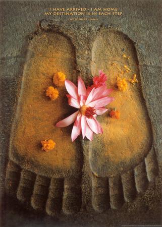 Thich Nhat Hanh-Sono arrivato... Stampa artistica