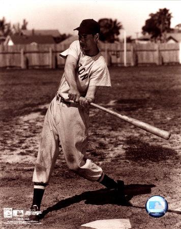 Ted Williams - Sepia swinging Photo