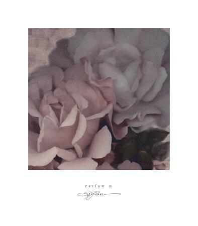 Parfum III Prints by S. G. Rose