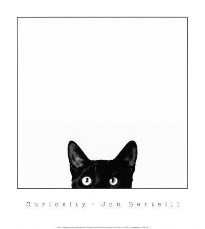 Nysgerrighed, Curiosity Plakater af Jon Bertelli