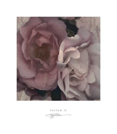 Parfum IV Print by S. G. Rose