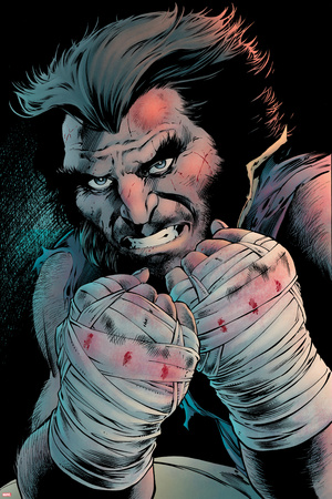 Wolverine 7 Cover: Wolverine Plastic Sign by Mirco Pierfederici