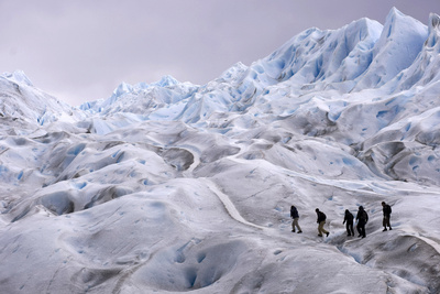 Climbers Trek on Argentina's Perito Moreno Glacier Near the City of El Calafate Photographic Print by Marcos Brindicci