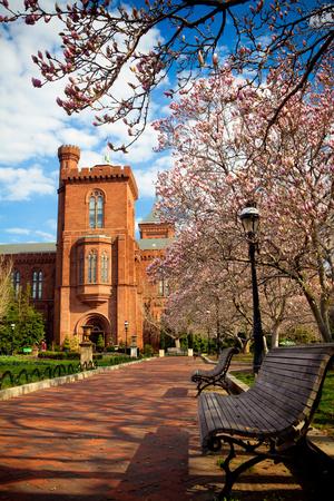 Washington DC Park Bench Spring Scene Photographic Print by  EvanTravels