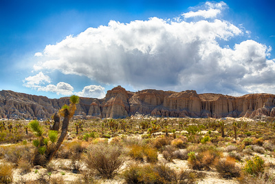Red Rock Canyon State Park Photographic Print by  garytog
