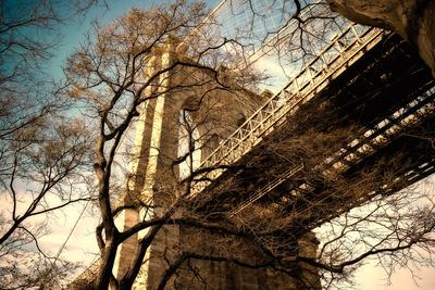 Brooklyn Bridge through Winter Tree Branches Photographic Print by  EvanTravels