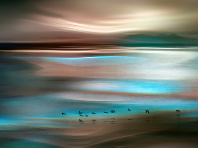 Migrations Metal Print by Ursula Abresch