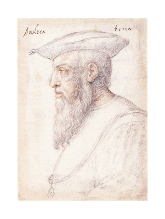 Portrait of Andrea Doria in Profile to the Left Giclee Print by Federico Zuccaro