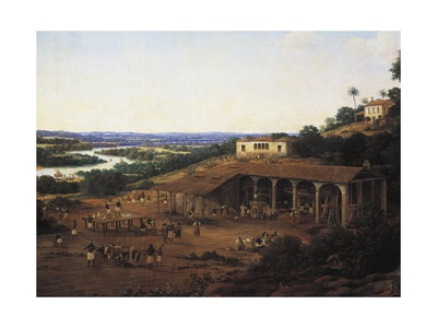 Sugarcane Mills in Brazil Giclee Print by Frans Post