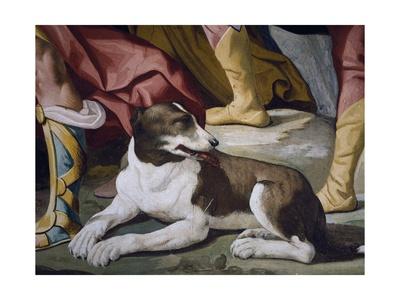 Dog Giclee Print by Luca Ferrari