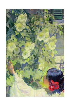 Hollyhocks, C.1923 Giclee Print by Philip Leslie Hale