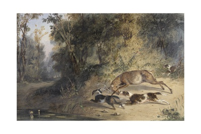 Deerhound and Bitch Cornering a Stag at the Edge of a Woodland Pool (W/C Giclee Print by Newton Fielding