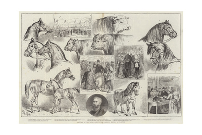 Sketches at the Royal Agricultural Society's Meeting at Norwich Giclee Print by Samuel John Carter