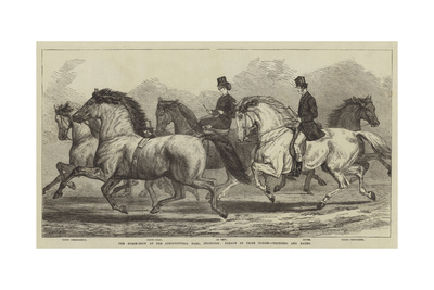 The Horse-Show at the Agricultural Hall, Islington, Parade of Prize Horses, Trotters and Hacks Giclee Print by Samuel John Carter