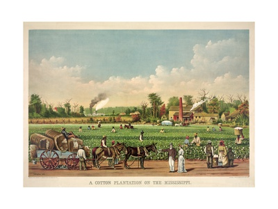 A Cotton Plantation on the Mississippi, Pub. 1884 Giclee Print by William Aiken Walker