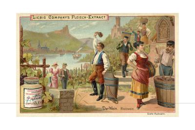 Wine: Rhine Wine Giclee Print