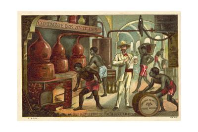 A Rum Distillery in Jamaica Giclee Print