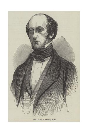 Mr T C Anstey Giclee Print