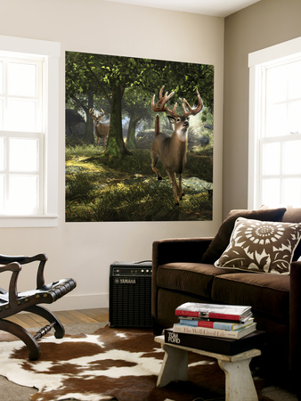 Big Buck Whitetail Deer Wall Mural by Mike Colesworthy