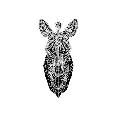 White Zebra Mesh Posters by Lisa Kroll