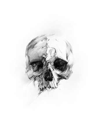 Skull 46 Prints by Alexis Marcou