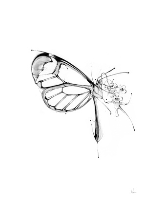 Butterfly Fuel Prints by Alexis Marcou