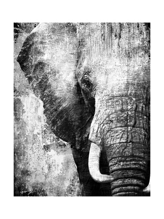 African Animals I - Grey Prints by Eric Yang