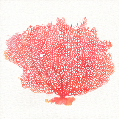 Watercolor Coral I Posters by Jairo Rodriguez
