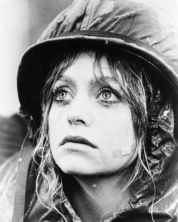 Private Benjamin Photo
