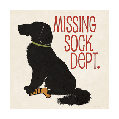 Missing Sock Prints by Jo Moulton
