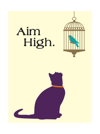 Aim High funny cat picture with words artwork