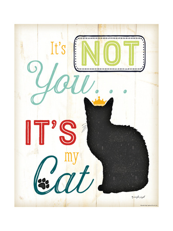 It's Not You It's My Cat Posters by Jennifer Pugh