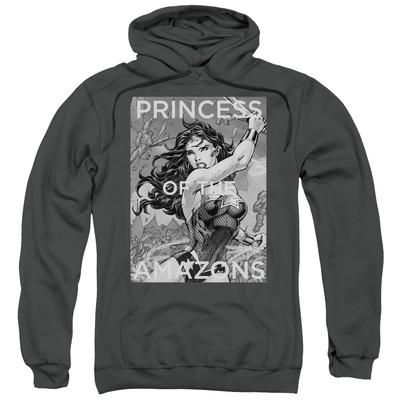 Hoodie: Wonder Woman- Princess Of The Amazons Pullover Hoodie