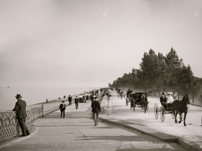 Lake Shore Drive, Lincoln Park, Chicago, Ill. Photo