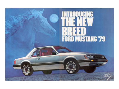 1979 Mustang - the New Breed Art