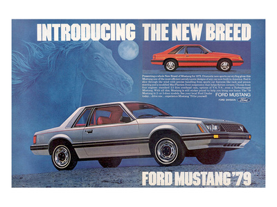1979 Mustang Sport Car Styling Posters