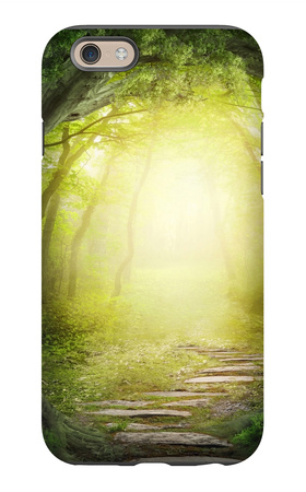 Road In Dark Forest iPhone 6s Case by  egal
