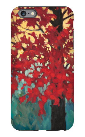 Color Show 2 iPhone 6 Plus Case by J Charles