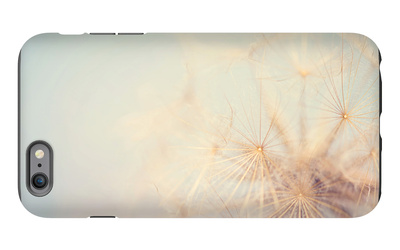 Dandelion Dreams iPhone 6 Plus Case by Laura Evans