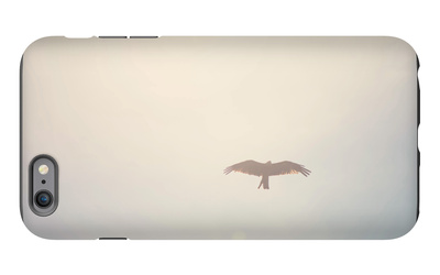 In Flight iPhone 6 Plus Case by Laura Evans