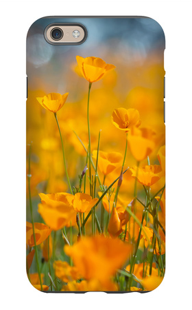 Riverside Poppies iPhone 6s Case by Vincent James