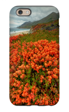 Summer Morning Coastal Color iPhone 6s Case by Vincent James