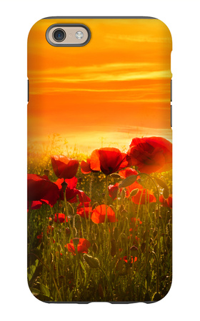 Spring Field iPhone 6 Case by Marco Carmassi