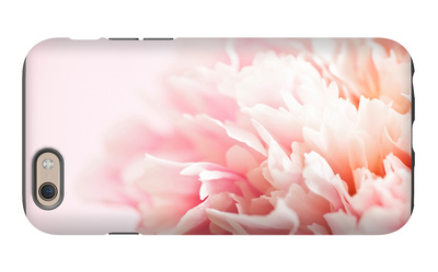 Fade to Pink iPhone 6 Case by Doug Chinnery