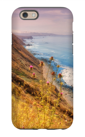 Sonoma Coast Mist iPhone 6 Case by Vincent James
